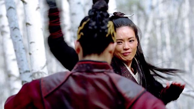 the assassin scena film